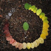 andy-goldsworthy-leaves